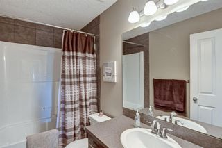 Photo 32: 17 Cranberry Lane SE in Calgary: Cranston Detached for sale : MLS®# A1142868