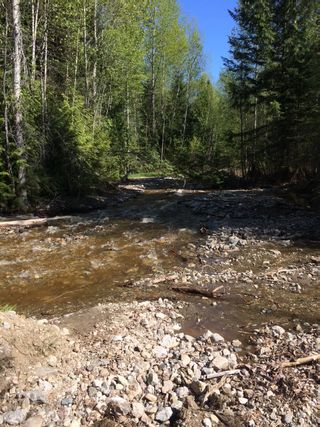 Photo 14: DL3592 & DL4084 1020 Forest Service Road in Seymour Arm: syemour arm Land Only for sale (shuswap)  : MLS®# 10241424