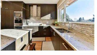 Photo 11: 1010 WILDWOOD Lane in West Vancouver: British Properties House for sale : MLS®# R2611799