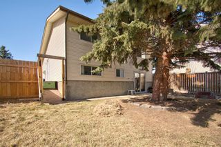 Photo 35: 14 Radcliffe Crescent SE in Calgary: Albert Park/Radisson Heights Detached for sale : MLS®# A1085056