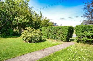 Photo 3: 3017 Millgrove St in VICTORIA: SW Gorge House for sale (Saanich West)  : MLS®# 814218