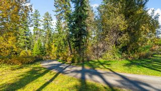 Photo 3: 3960 Northeast 20 Street in Salmon Arm: UPPER RAVEN House for sale (NE Salmon Arm)  : MLS®# 10205011
