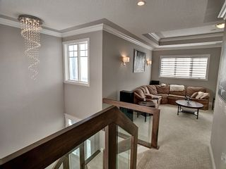 Photo 16: 3668 HUMMINGBIRD Way in Edmonton: Zone 59 House for sale : MLS®# E4262451