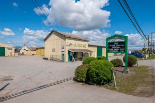 Photo 3: 17731 WESTMINSTER Highway in Richmond: East Richmond Agri-Business for sale : MLS®# C8038030