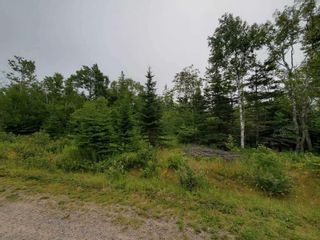 Photo 4: Lot 12 Fundy Bay Drive in Victoria Harbour: 404-Kings County Vacant Land for sale (Annapolis Valley)  : MLS®# 202119692