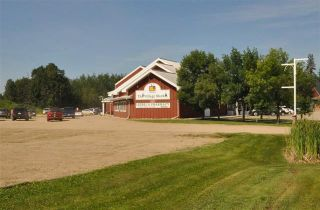 Photo 25: 157 CRYSTAL SPRINGS Drive: Rural Wetaskiwin County Rural Land/Vacant Lot for sale : MLS®# E4235152