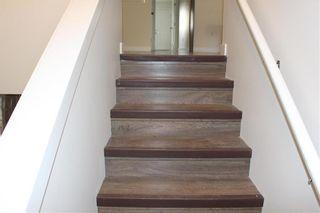 Photo 18: 286 Rutland Street in Winnipeg: St James Residential for sale (5E)  : MLS®# 202124633