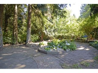 Photo 7: 13760 62 Ave in Surrey: Home for sale : MLS®# F1445482