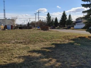 Photo 2: 5515 48 Street: Tofield Vacant Lot for sale : MLS®# E4232149