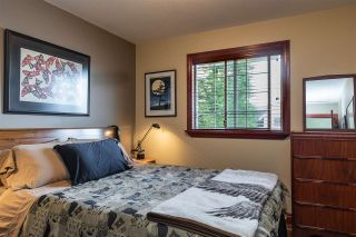 Photo 26: 8426 JENNINGS Street in Mission: Mission BC House for sale : MLS®# R2537446