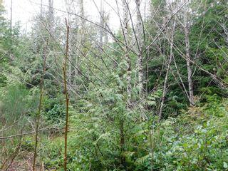 Photo 2: 721 Bamfield Rd in : PA Bamfield Land for sale (Port Alberni)  : MLS®# 870725