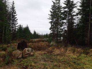 Photo 5: LOT 3 Timberline Way in : Sk Jordan River Land for sale (Sooke)  : MLS®# 862147