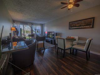 Photo 14: 105 250 Hemlock St in : PA Ucluelet Condo for sale (Port Alberni)  : MLS®# 875246