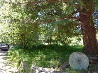 Photo 8: 729 Cramer Rd in : Isl Quadra Island House for sale (Islands)  : MLS®# 881631