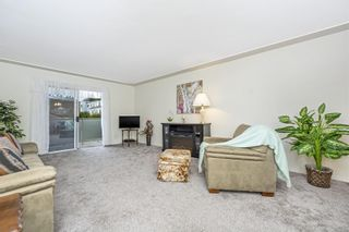 Photo 9: 208 254 First St in : Du West Duncan Condo for sale (Duncan)  : MLS®# 888223
