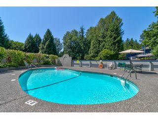 Photo 35: 53 9101 FOREST GROVE DRIVE in Burnaby: Forest Hills BN Townhouse for sale (Burnaby North)  : MLS®# R2603492