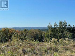 Photo 9: - Saint David Ridge in St. Stephen: Vacant Land for sale : MLS®# NB063465