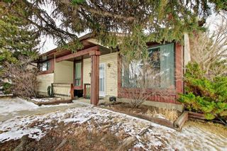 Photo 4: 2141 SUMMERFIELD Boulevard SE: Airdrie Detached for sale : MLS®# A1100597