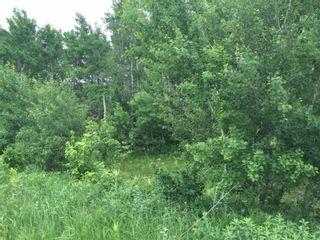 Photo 4: 0 Poplar Bay: St Laurent Residential for sale (R19)  : MLS®# 1905060