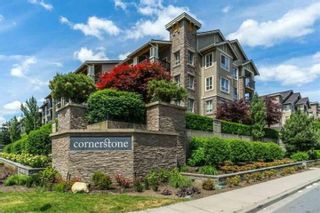 "Photo 17: 125 5655 210A Street in Langley: Salmon River Condo for sale in ""CORNERSTONE NORTH"" : MLS®# R2552598"