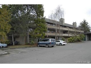 Photo 20: 202 3215 Alder St in VICTORIA: SE Quadra Condo for sale (Saanich East)  : MLS®# 728230