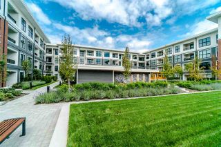 Photo 14: 229 9500 TOMICKI Avenue in Richmond: West Cambie Condo for sale : MLS®# R2424566
