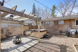 Photo 41: 800 Acadia Drive SE in Calgary: Maple Ridge Detached for sale : MLS®# A1091895