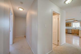 Photo 24: 1821 232 Avenue in Edmonton: Zone 50 House for sale : MLS®# E4251432