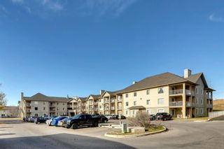 Main Photo: 303 3000 Citadel Meadow Point NW in Calgary: Citadel Apartment for sale : MLS®# A1157134