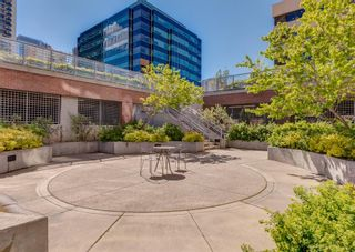 Photo 27: 1605 650 10 Street SW in Calgary: Downtown West End Apartment for sale : MLS®# A1108140