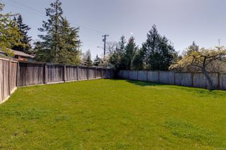 Photo 42: 3859 Epsom Dr in : SE Cedar Hill House for sale (Saanich East)  : MLS®# 872534
