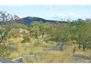 Photo 12: 4041 Nelthorpe St in VICTORIA: SE High Quadra Land for sale (Saanich East)  : MLS®# 685817