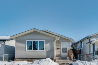Photo 1: 10 Abalone Crescent NE in Calgary: Abbeydale Detached for sale : MLS®# A1072255