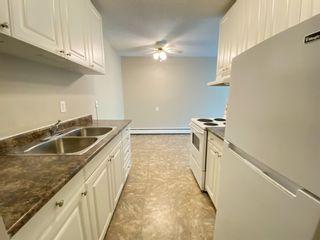 Photo 7: 305 10330 113 Street in Edmonton: Zone 12 Condo for sale : MLS®# E4250079