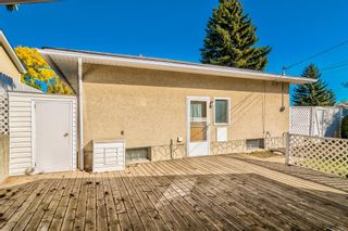 Photo 41: 7003 Hunterview Drive NW in Calgary: Huntington Hills Detached for sale : MLS®# A1148767