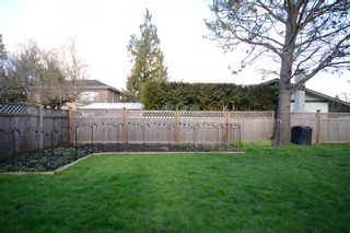Photo 26: 10371 SPRINGWOOD CRESCENT in Richmond: Steveston North House for sale ()  : MLS®# R2037825