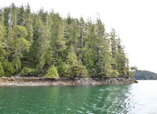Photo 10: SL 37 Hot Springs Oceanside in : PA Tofino Land for sale (Port Alberni)  : MLS®# 857515
