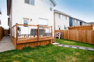 Photo 35: 317 South Point Green SW: Airdrie Detached for sale : MLS®# A1112953