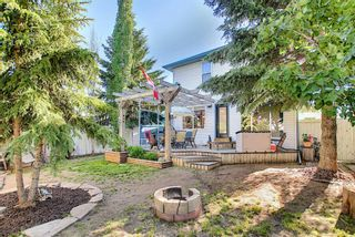 Photo 44: 131 Bridlewood Circle SW in Calgary: Bridlewood Detached for sale : MLS®# A1126092