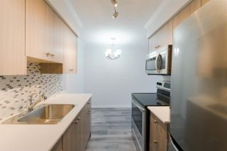 Photo 4: 212 611 BLACKFORD Street in New Westminster: Uptown NW Condo for sale : MLS®# R2260404