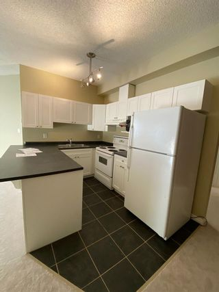 Photo 6: 105 10118 95 Street in Edmonton: Zone 13 Condo for sale : MLS®# E4231734