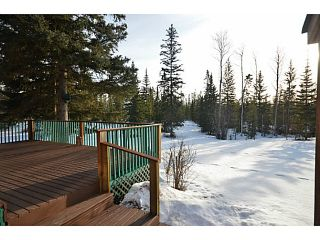 Photo 17: 12245 TEICHMAN Road in Prince George: Beaverley House for sale (PG Rural West (Zone 77))  : MLS®# N242032