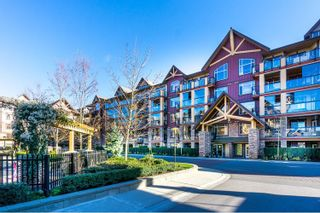 """Photo 1: 527 8288 207A Street in Langley: Willoughby Heights Condo for sale in """"Yorkson Creek Walnut Ridge II"""" : MLS®# R2051394"""