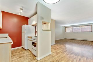 Photo 5: 131 1421 7 Avenue NW in Calgary: Hillhurst Apartment for sale : MLS®# A1074873