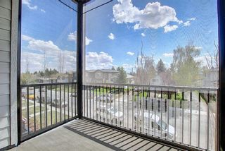 Photo 25: 4305 1317 27 Street SE in Calgary: Albert Park/Radisson Heights Apartment for sale : MLS®# A1107979