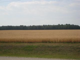 Photo 15: SE 20 30 1 W5 Highway 2A: Carstairs Residential Land for sale : MLS®# A1067588