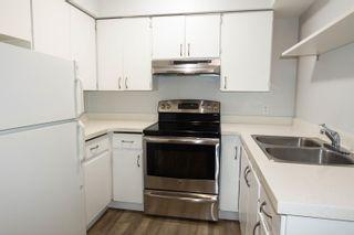Photo 2: 302 1948 COQUITLAM Avenue in Port Coquitlam: Glenwood PQ Condo for sale : MLS®# R2621147