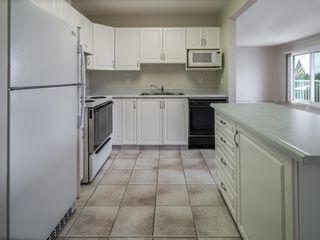 Photo 6: 44 9914 80 Avenue in Edmonton: Zone 17 Condo for sale : MLS®# E4249192