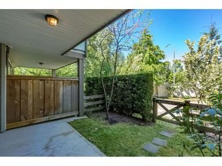 Photo 17: 33 8250 209B Street in Langley: Willoughby Heights Townhouse for sale : MLS®# R2267835