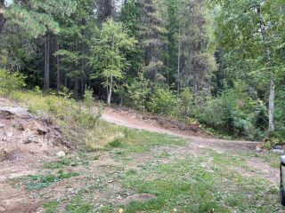 Photo 24: 1969 SANDY ROAD in Castlegar: Vacant Land for sale : MLS®# 2461033